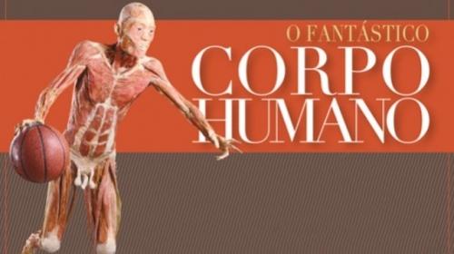 fantástico_corpo_humano_4