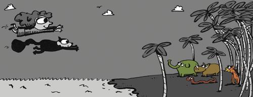 um-ano-na-selva